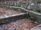 fuente secado
