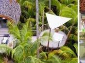 Cuatro experiencias Varua Polynesian Brando