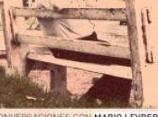 """""""Conversaciones Mario Levrero"""" Pablo Silva Olazábal"""