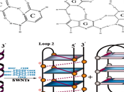 nueva estructura molécula vida: