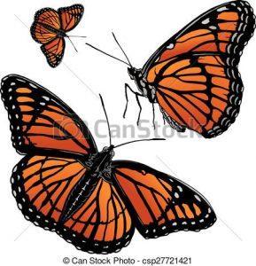 El sorprendente viaje de la mariposa monarca