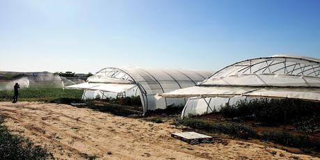 Terrain Lab: La agricultura y la gastronimía modelan el territorio en Navarra