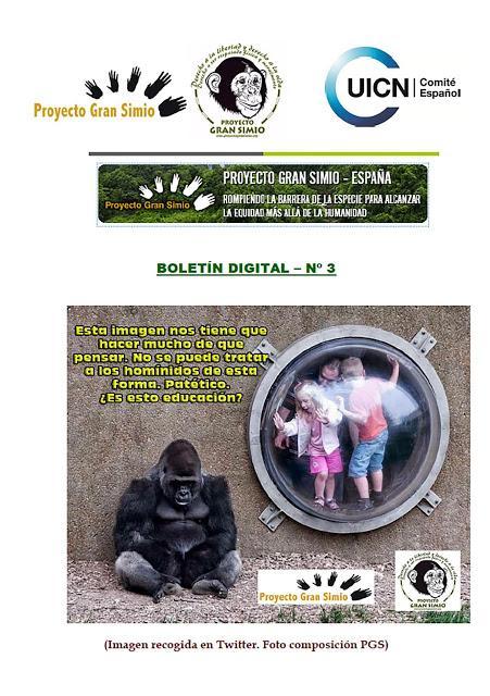 BOLETIN DIGITAL - 3  PROYECTO GRAN SIMIO