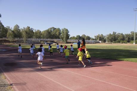 Se abre la inscripción para la Escuela y la Pequescuela Deportivas de Verano de la UPO