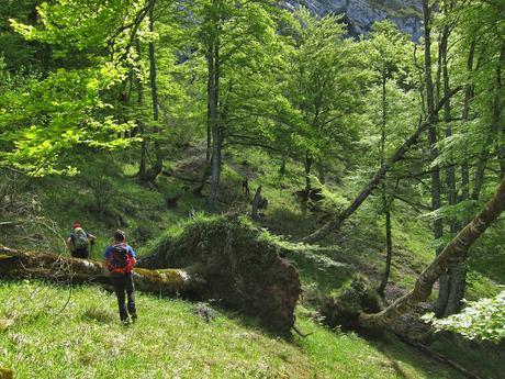 El Camín de los Beyuscos (Parte I): De Vidosa a Cueva Negra.