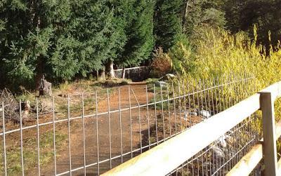 """Villa La Angostura Hensel: """"Hicimos una denuncia penal y un pedido a Recursos Hídricos"""""""