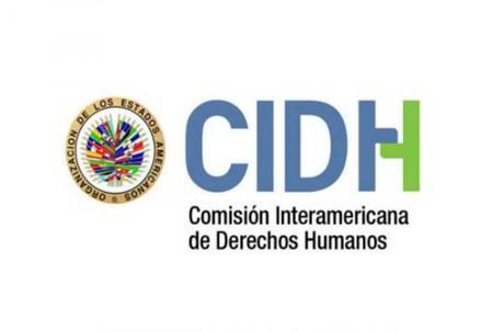 CIDH saluda la aprobación del Protocolo para la investigación y litigio de femicidios en Argentina