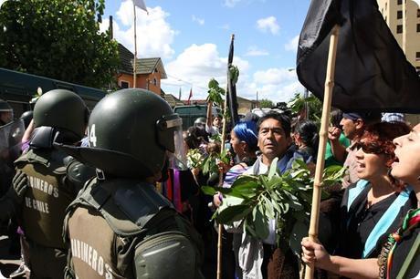 Despojo de tierras mapuche en Chile mediante contratos a 99 años.