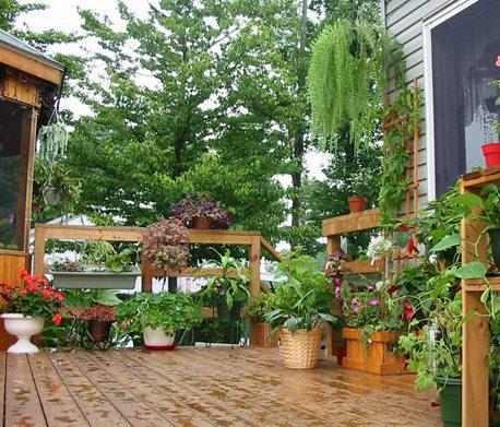 Un jard n en tu patio terraza o balc n paperblog - Terrazas con jardin ...
