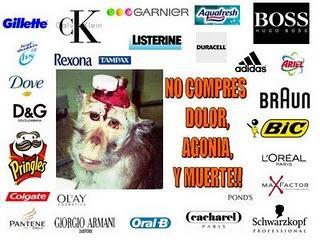 La lista de la discordia: experimentación animal.