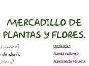 Pilar Horadada. Flores