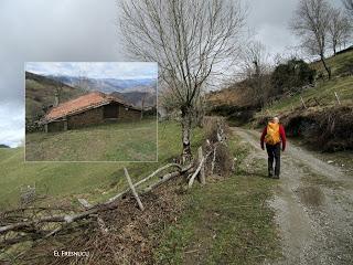 Levinco-Vega-Escoyo-La Collaona