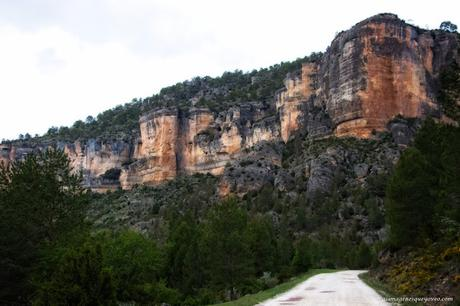 Parque Natural del Alto Tajo. Peralejos de las truchas, divisa los buitres sobrevolando los acantilados