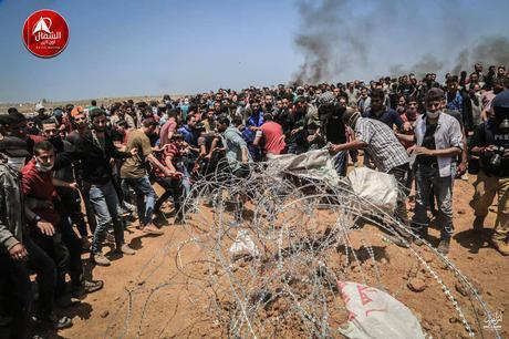 Alborotadores palestinos cortando el alambre de púas en enfrentamientos en el este de Jabalia (página de Facebook de Beit Hanoun News, 14 de mayo de 2018).