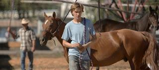 LEAN ON PETE (Reino Unido (U.K.), 2017)  Drama, Vida Normal