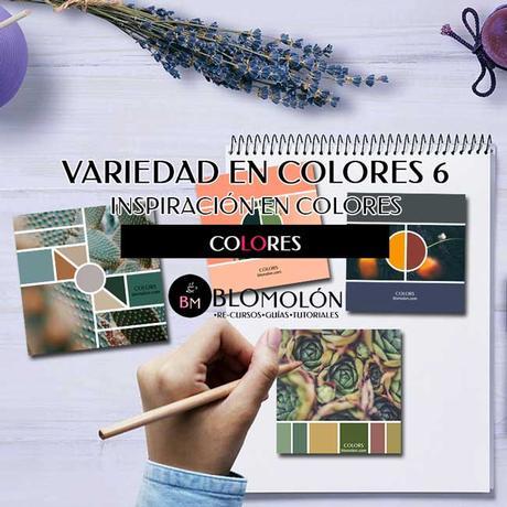 variedad_en_color_color_6_inspiracion