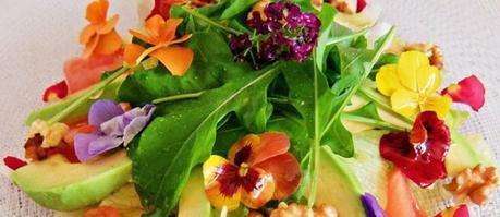 Qué flores son comestibles
