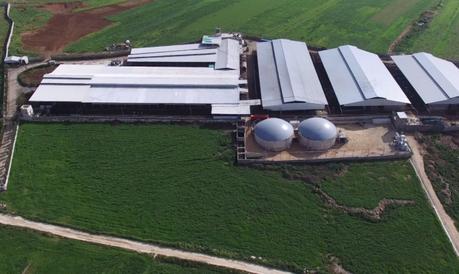 Resultat d'imatges de biogas ganadería