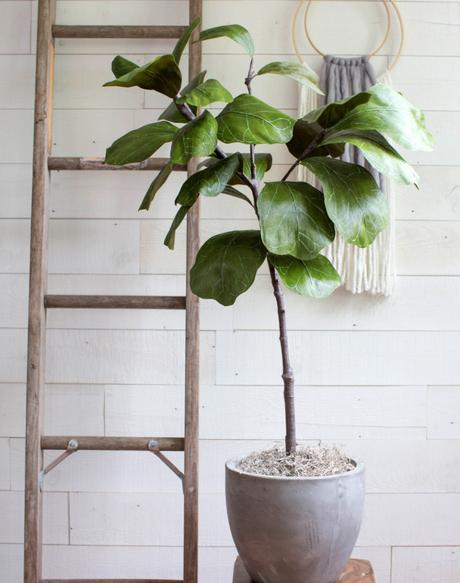 4 Diy para crear plantas que no podrás creer que son artificiales