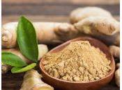 Beneficios usos culinarios jengibre