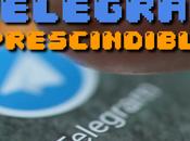 Canales, grupos bots Telegram imprescindibles para