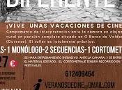 productora Sintelobos presenta Veranos Cine