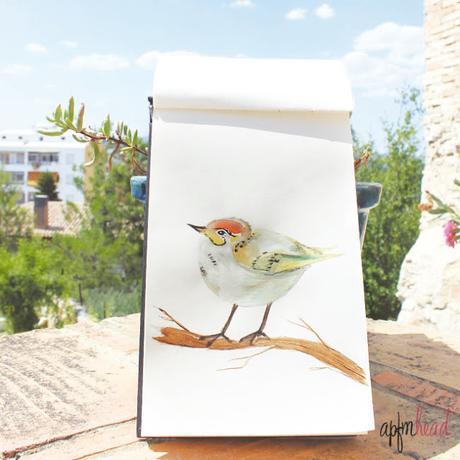 Pintando: Pájaro con acuarela