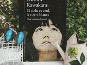 Reseña Cielo azul, tierra blanca Hiromi Kawakami