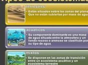 Tipos Ecosistemas