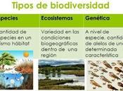 Tipos Biodiversidad