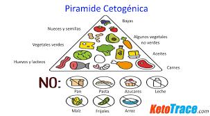 Resultado de imagen para dieta cetogenica para epilepsia