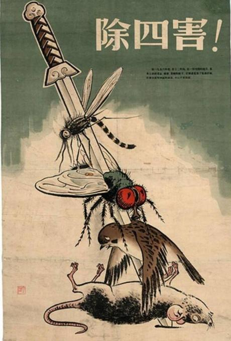 Matanza de gorriones en China