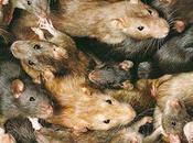 Ratones sucios para investigación reproducible