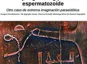 falso jeroglífico egipcio espermatozoide Otro caso extrema imaginación paraeidólica.