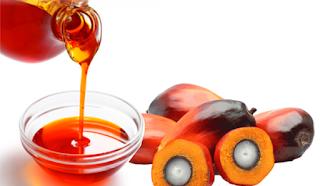 ¿Por qué el aceite de palma es malo para ti y el ambiente?