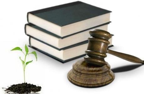 importancia de la Legislacion Ambiental