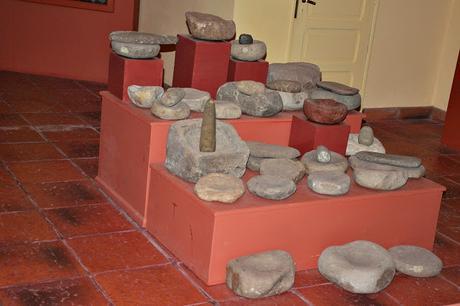 Charla de aves en el museo de Lobería