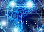 Neuroderechos universales, propósito dignidad persona investigación)