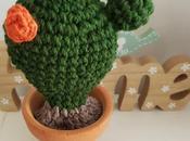 Cactus simbiosis
