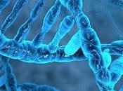 crimen Almonte (X): confusa evidencia genética