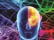 "Estanislao Bachrach: cerebro importa seas feliz, solo sobrevivas"""