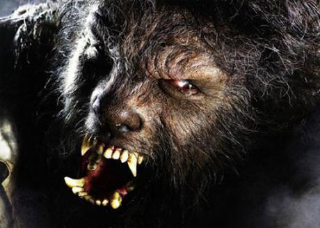 El Hombre Lobo -una revisión del mito con dosis de gore-