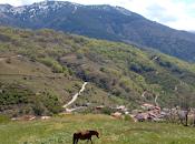 "National Geographic elige Valle Jerte como ""Las Maravillas Naturales España"""