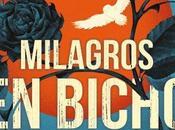 Ediciones publicará nueva novela Maggie Stiefvater bajo título 'Milagros Bicho Raro'