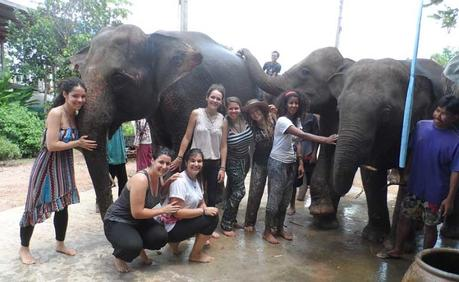 Voluntariado en Tailandia - Elefantes