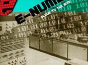 E-NUMBER slave bits