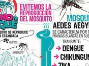 Medicina viajero dengue, síntomas tratamiento