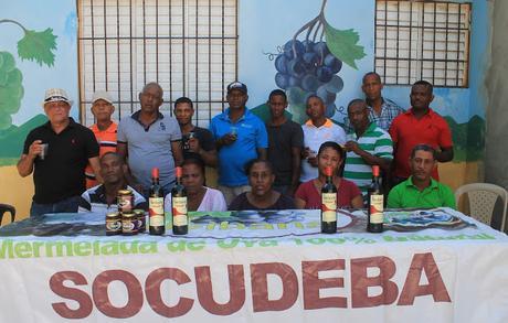 Entidad denuncia contubernio director INUVA con intermediarios de la uva.