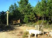 Entre españa portugal: recuerdos piedra