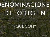 Tipos denominaciones origen españolas